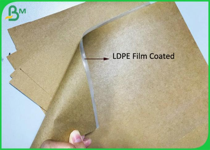 Grease resistant 15G LDPE coated Brown Paper 300Gsm Craft Board Food Paper Tray